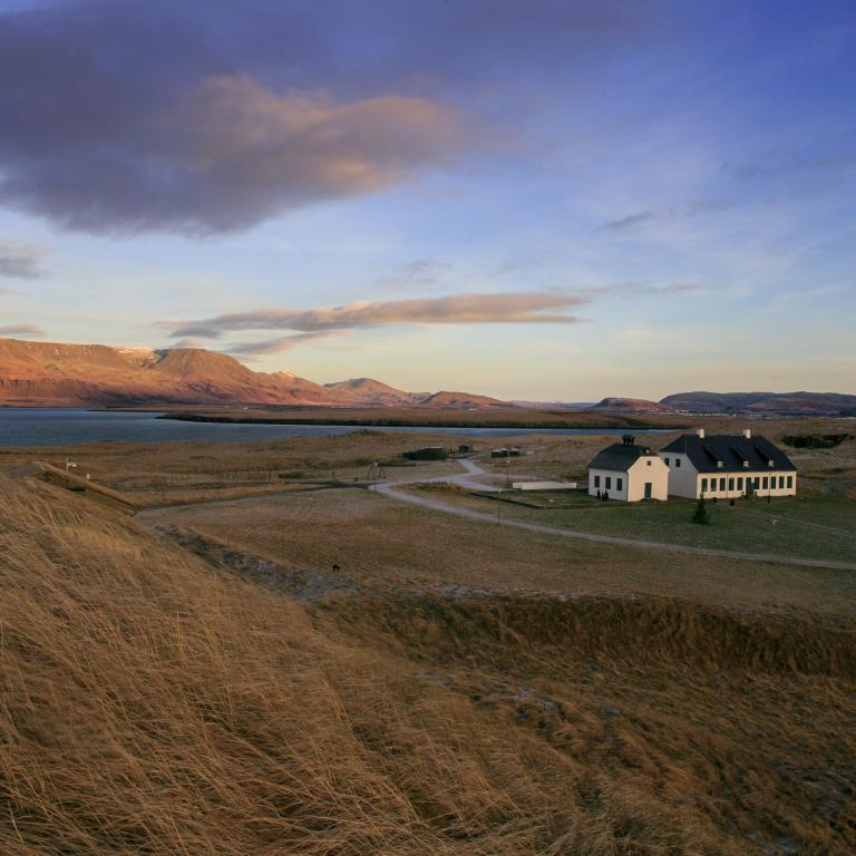 Séð yfir Viðey á köldum vetrardegi.