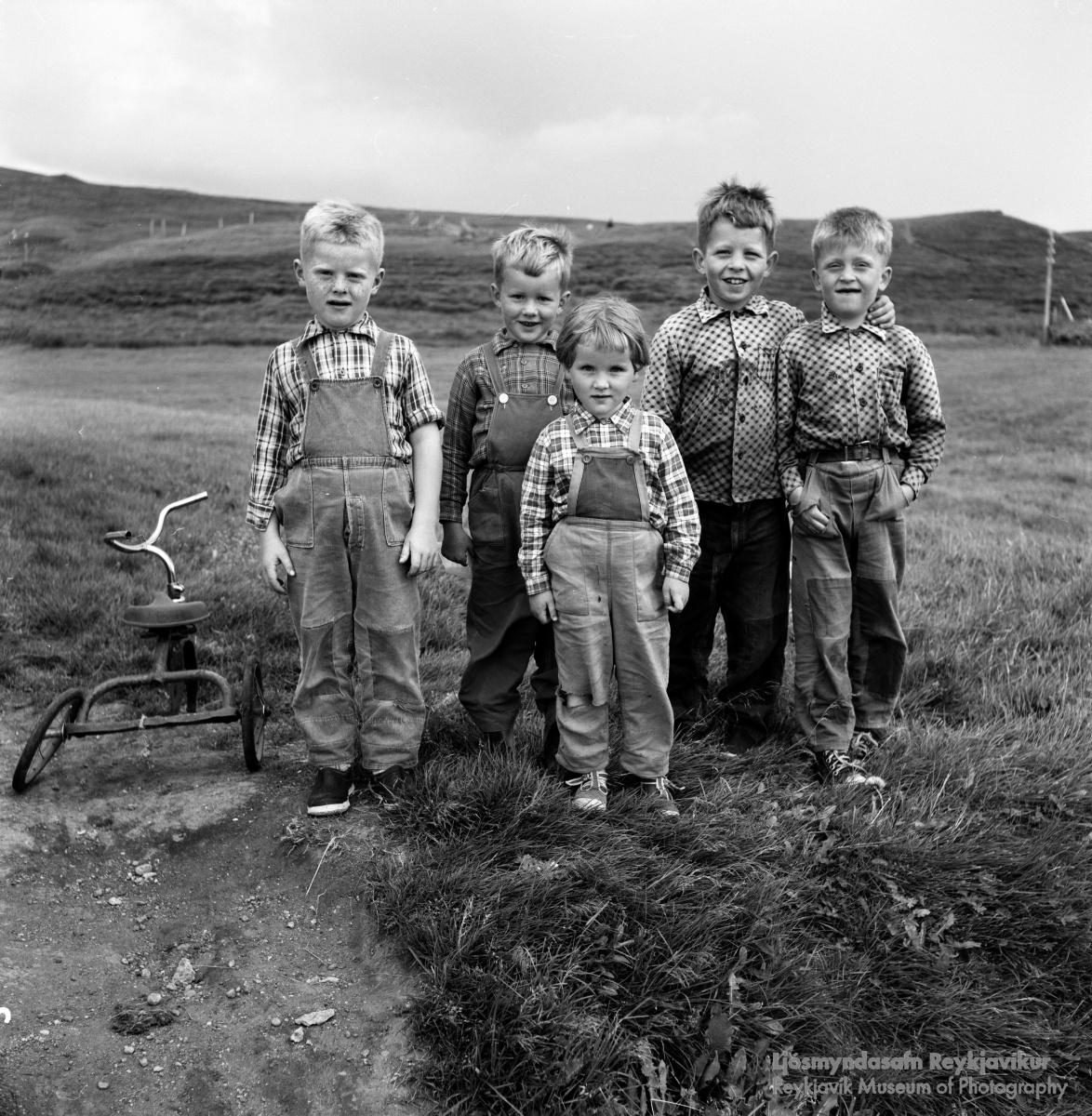Ljósmynd: Ragnheiður Bjarnadóttir